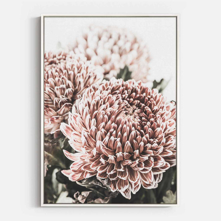 Print Workshop, Canvas Print, Vintage Floral #4, Floating Frame, White Smooth Coating