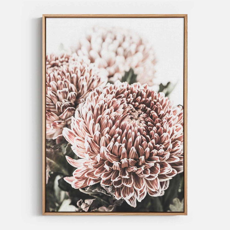 Print Workshop, Canvas Print, Vintage Floral #4, Natural Australian Oak Floating Frame
