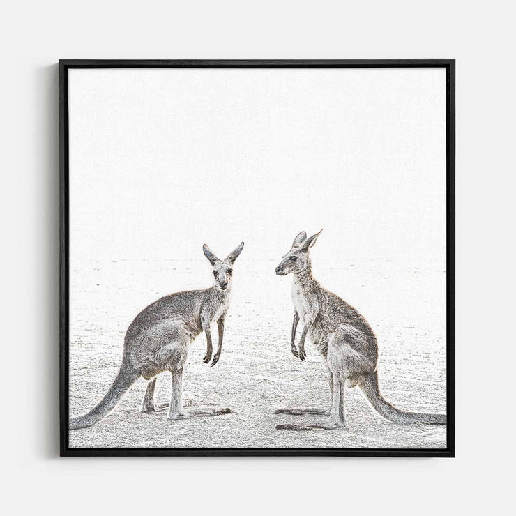 Print Workshop, Canvas Print (Square Size), Two Beach Kangaroos, Natural Oak Floating Frame, Black Coating