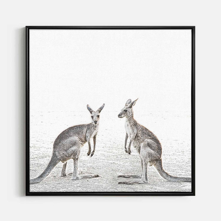 Print Workshop, Canvas Print (Square Size), Two Beach Kangaroos, Floating Frame, Black Smooth Coating
