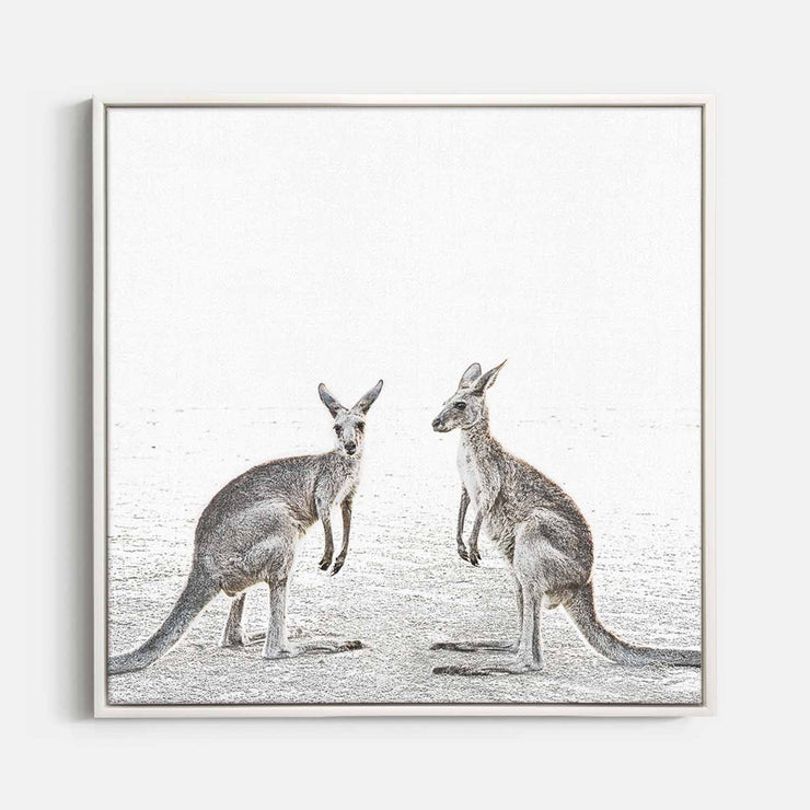 Print Workshop, Canvas Print (Square Size), Two Beach Kangaroos, Floating Frame, White Smooth Coating