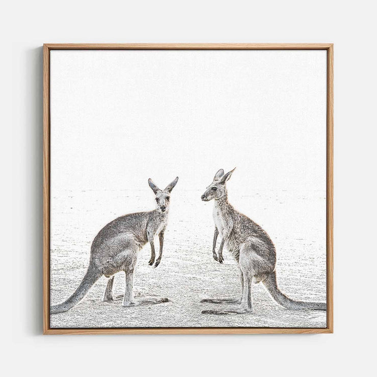 Print Workshop, Canvas Print (Square Size), Two Beach Kangaroos, Natural Australian Oak Floating Frame