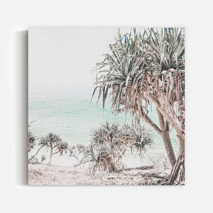 Pandanus Canvas