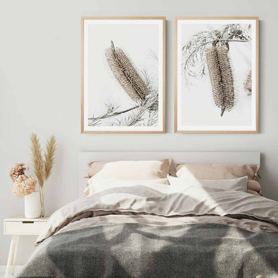 Banksia Earth 1 & 2 Framed Print Mockup