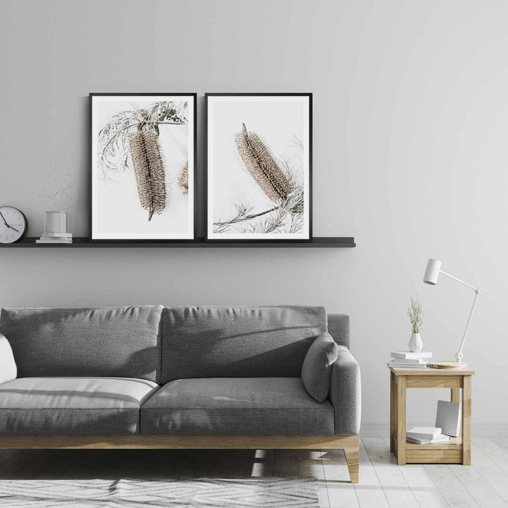 Banksia Earth 1 & 2 Framed Print Mockup #2