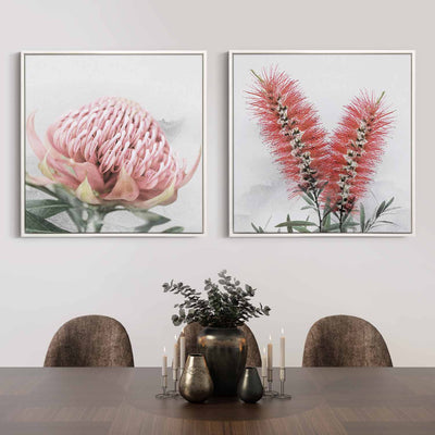 Blooming Waratah & Native Bottle Brush Canvas Mockup
