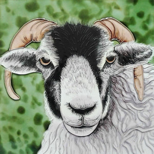 "Black Faced Ram Decorative Ceramic Picture Tile 8x8"" Home Decoration Wall Art"