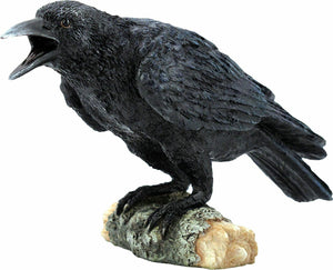 Nemesis Now Ravens Call 20cm Figurine Gothic Ornament