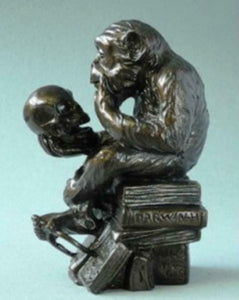 Pocket Art Museum Reproduction Sculpture Monkey with Skull  Darwin