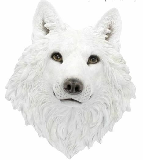 Large White Wolf Wall Plaque Gothic Wall Art Home Ornament