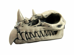 Dragon Skull Large Bone Finish Sculpture By Design Clinic Ornament Sculpture