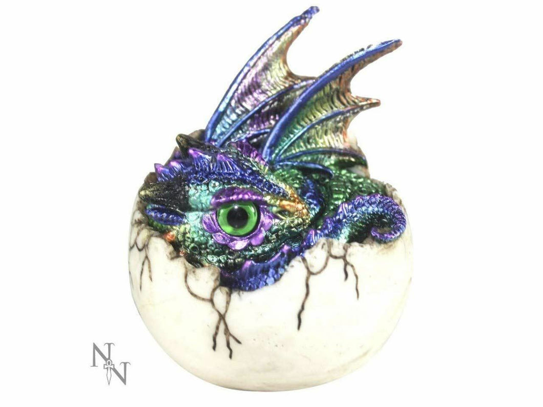 Small Azurine Hatchling Dragon Figurine Ornament Magical Mystical Gift