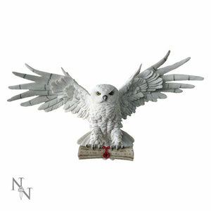 The Emissary Owl In Flight Holding Scroll Wall Mountable Large Wiccan Pagan