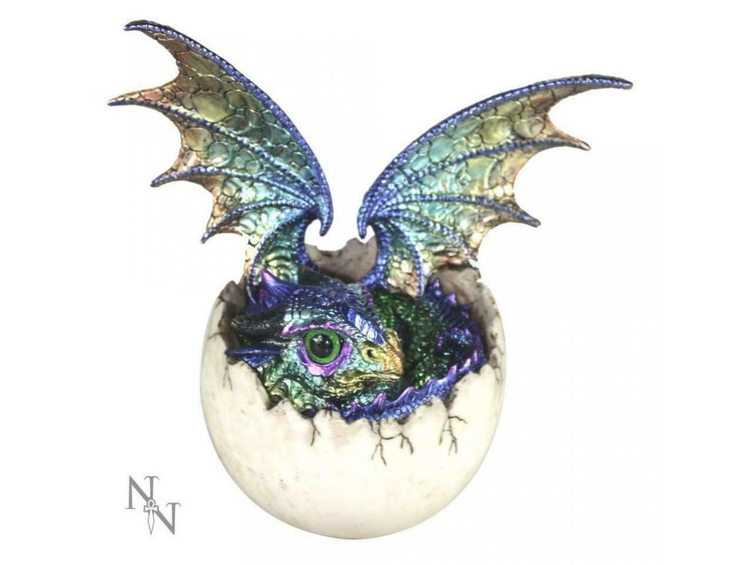 Dragon in Egg Figurine Statue Sculpture Dragons Lovers Gift Idea Ornament