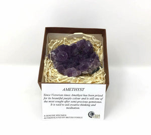 Crystal Amethyst Specimen in Gift Box with Information Card