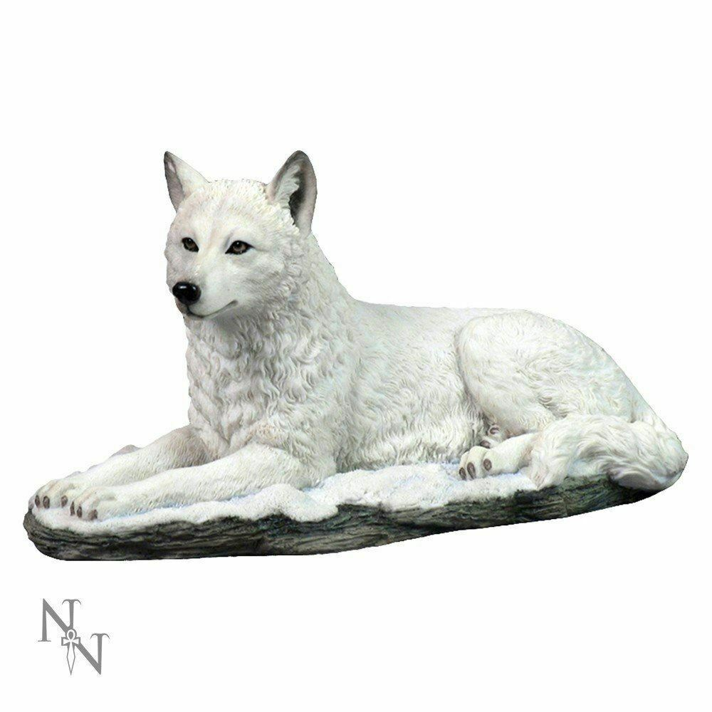 Winter White Wolf Statue Sculpture Figure Ornament Veronese Gift