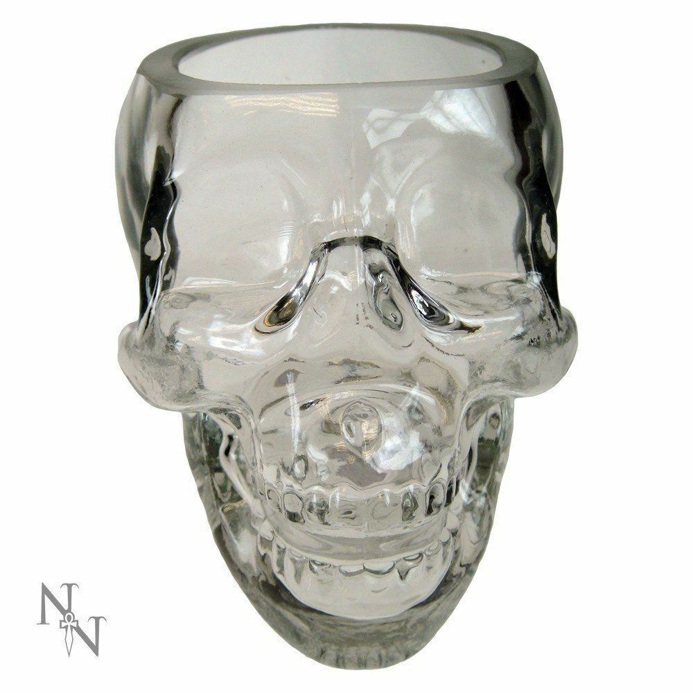 NEMESIS NOW CRYSTAL SKULL DRINKING GLASS TUMBLER GOTH BIKER GIFT