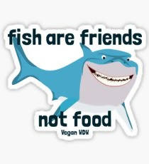 Fish Are Friends Not Food VDW Shark- Sticker