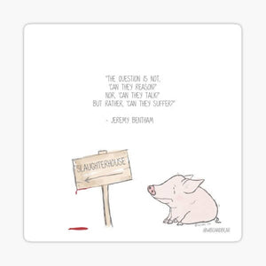 Jeremy Bentham Quote Vegan Pig Sticker