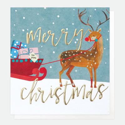 painted-deer-with-sleigh-charity-christmas-card-pack-pnt536-Card Packs-1