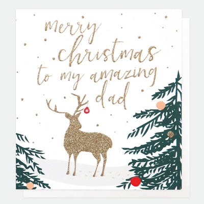 luxury-single-christmas-card-for-dad-lcx029-Single Cards-1