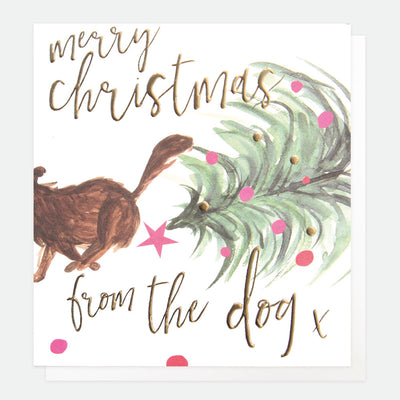 christmas-card-from-the-dog-qux001-Single Cards-1
