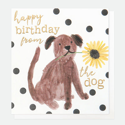 painted-birthday-card-from-the-dog-pai023-Single Cards-1
