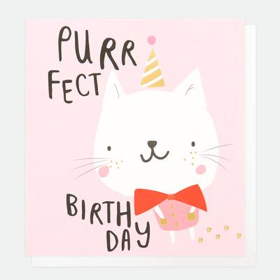 party-purrfect-cat-birthday-card-pty008-Single Cards-1