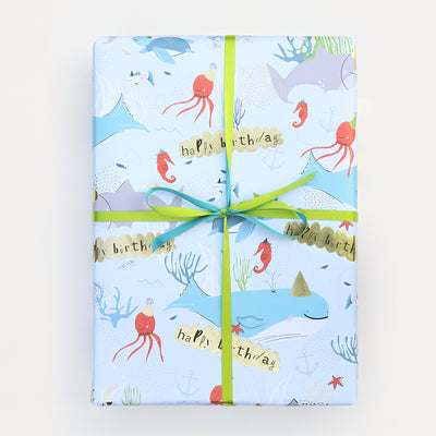 birthday-boy-wrapping-paper-gwl500-Wrap-1