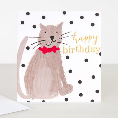 painted-cat-birthday-card-pai008-Single Cards-1