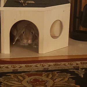 Bunny Rabbit Corner Castle House