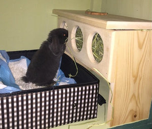 Elevated Rabbit Hay Feeder