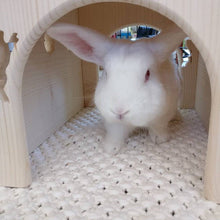 Load image into Gallery viewer, Rabbit House