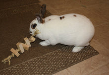 Load image into Gallery viewer, Sisal Rope Rabbit Toy