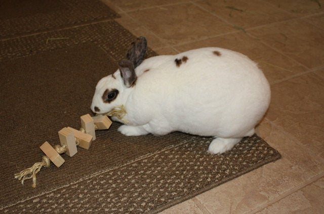Sisal Rope Rabbit Toy
