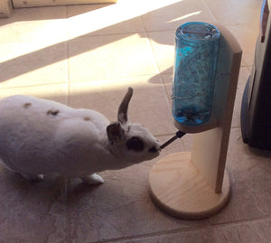 Rabbit, guinea pig, chinchilla water bottle holder