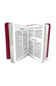 RVR 1960 Colormax Bible (Hot Pink Dura Max Binding)