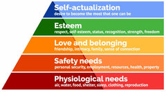 Maslows hierarchy - Ikigai - life purpose Tim Tamashiro