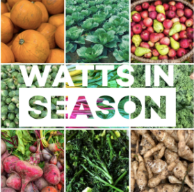 Watts in season - November