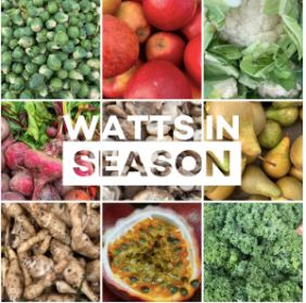 Watts in season - December