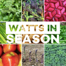 Watts in season - April