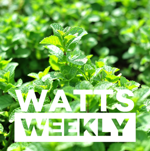 Watts Weekly