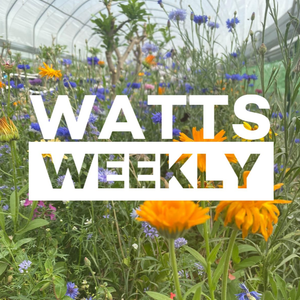 Watts Weekly - 20/07