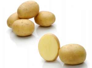 Baby Mid Salad Potatoes - kg-Watts Farms