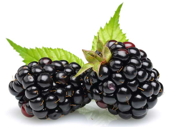 Kentish Blackberries 125g