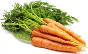 Carrot Bunched-Watts Farms