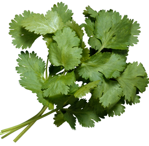 Coriander 150g-Watts Farms