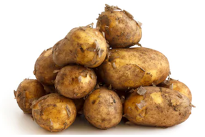 Jersey Royal Mid Potatoes - 500g-Watts Farms