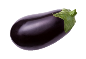 Aubergine - Each-Watts Farms