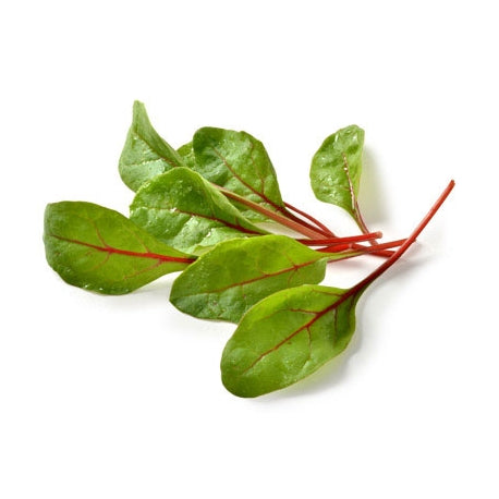 Baby Leaf Red Chard- 100g